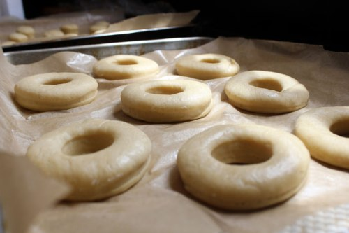 Donuts ready to go